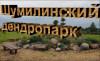 Дендропарк г.п. Шумилино